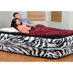 Raised Air Mattress
