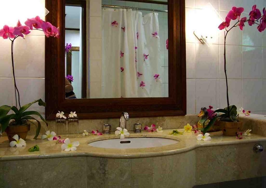Decorated Bathroom Ideas