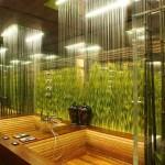 Rainforest Bathroom Decor