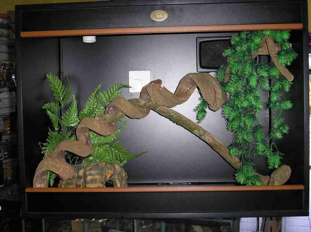 Best Aquarium Decorations Decor Ideasdecor Ideas