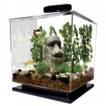 Funny Aquarium Decorations