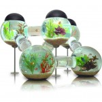Small Aquarium Decorations