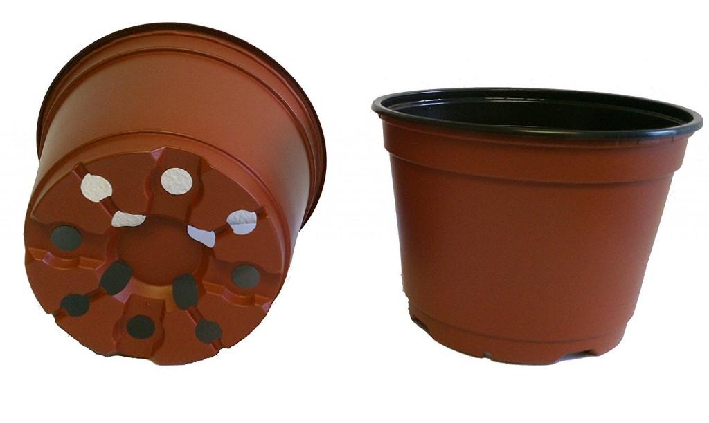 6 Inch Nursery Pots