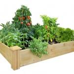 Cedar Raised Garden Bed Kit