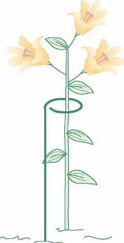 Flower Supports Plant Stakes