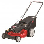 Best Lawn Mower Engine