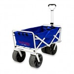 Foldable Utility Wagon