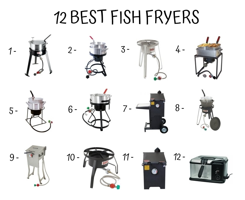 12 Best Fish Fryers
