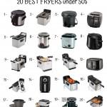 20 Best Fryers Under 50$
