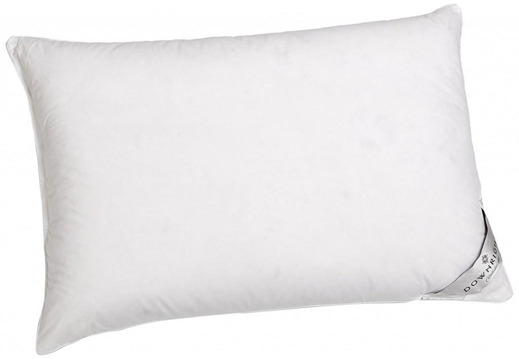 Downright 360 Thread Count 16 Oz Logana Down Pillow
