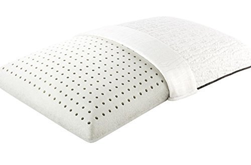 Beautyrest Black Diamond Luxe Traditional Shape Ventilated Pillow